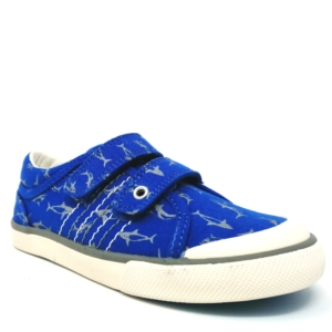 Startrite Boys Canvas Shoes - WAVE